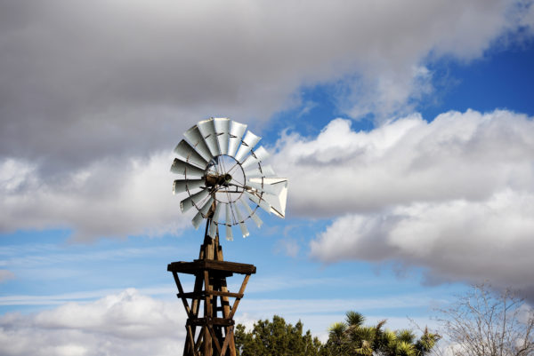 Windmill Ornamental