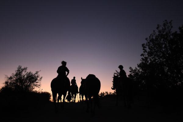 Vasquez Rocks Horseback Riding