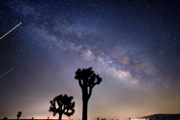 Antelope Valley Desert